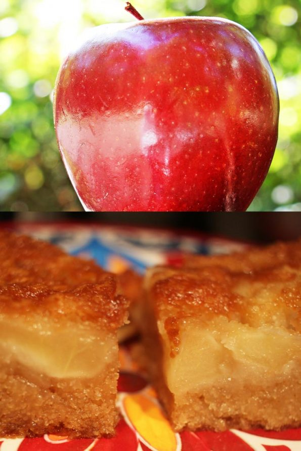 easy fresh apple cake recipe