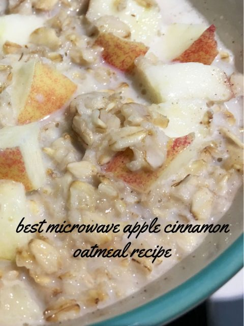 omemade cinnamon apple oatmeal recipe