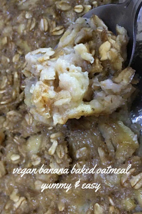 Vegan baked oatmeal recipe easy