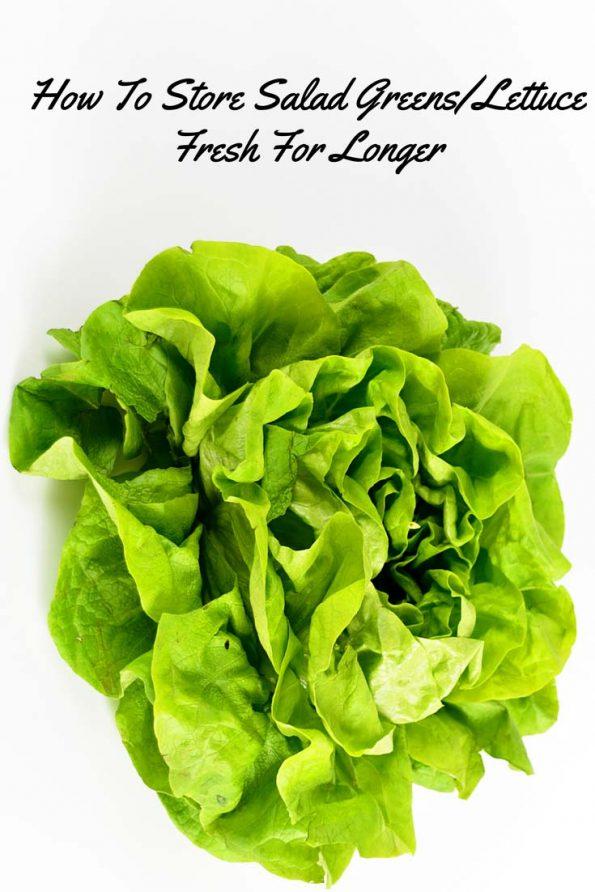 best way store salad greens fresh lettuce