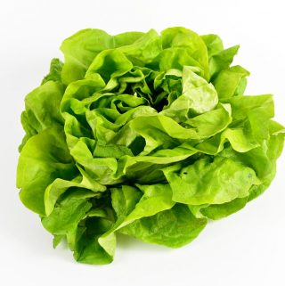 Best Way To Store Salad Greens Fresh – How To Store Lettuce Fresh For Longer