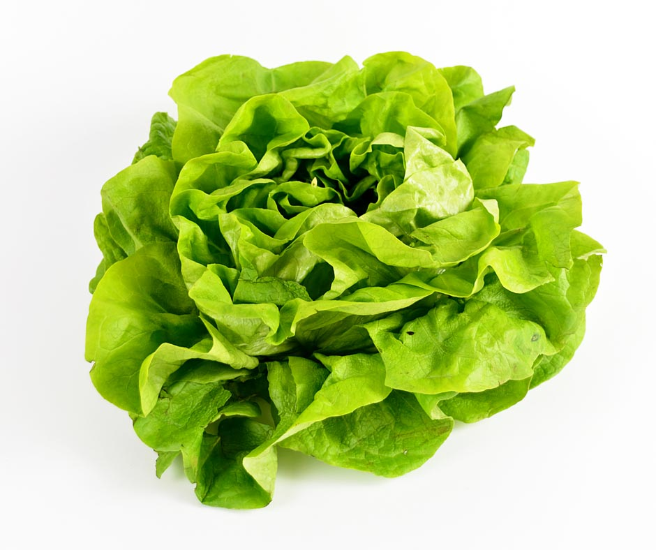 best way to store salad greens fresh lettuce