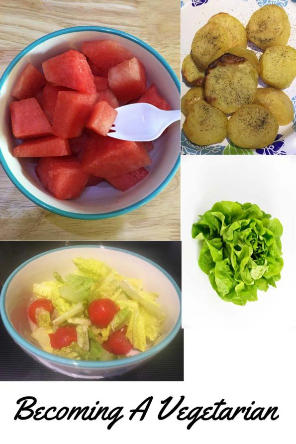 how to become a vegetarian beginners guide