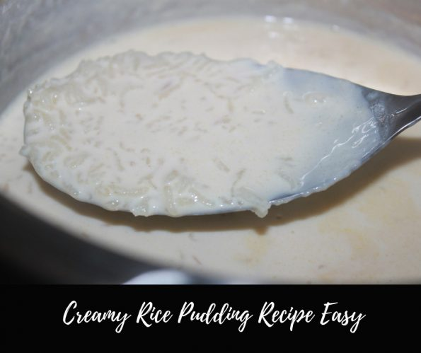easy rice pudding recipe pressure cooker