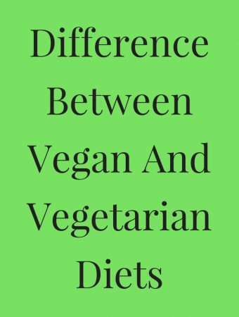 what is the difference Between a vegan and a vegetarian diets