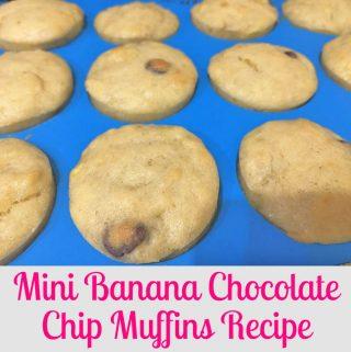 Mini Banana Chocolate Chip Muffins Recipe