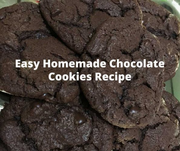 moist chocolate cookie recipe from scratch