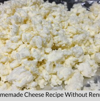homemade cheese without rennet