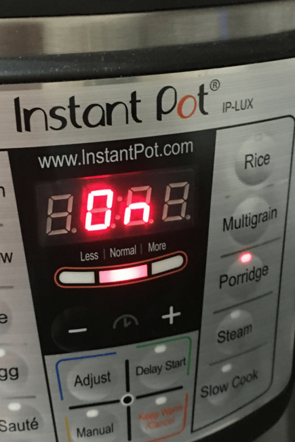 instant pot porridge setting