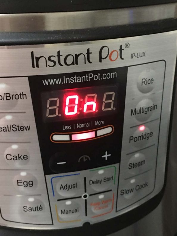 rice pudding in instant pot