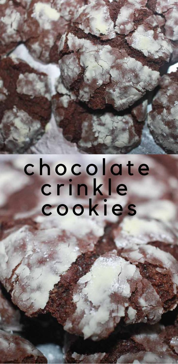 chocolate crinkle cookies for christmas