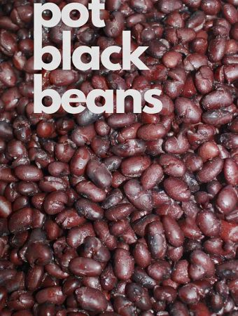 instant pot black beans using soaked beans