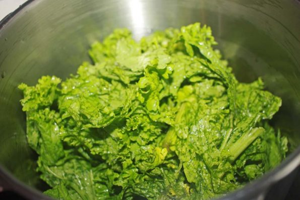 mustard greens leaves picture