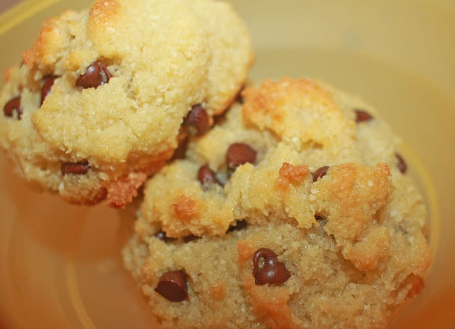 coconut flour chocolate chip cookies gluten free recipe