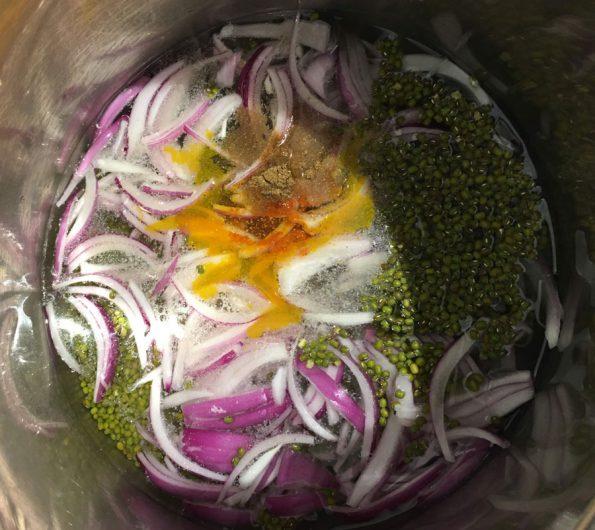 make instant pot mung bean soup