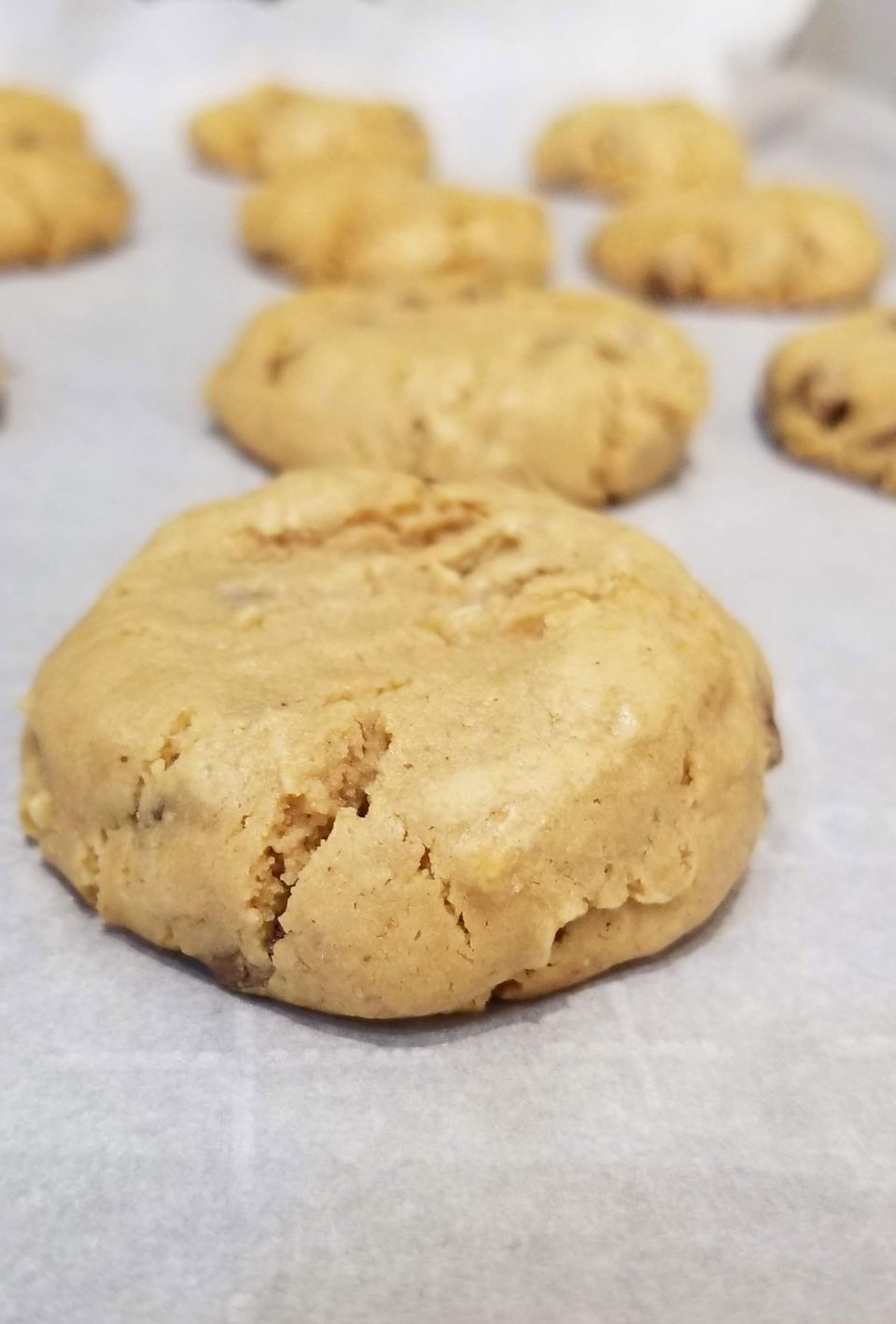 soft peanut butter cookies with chocolate chips