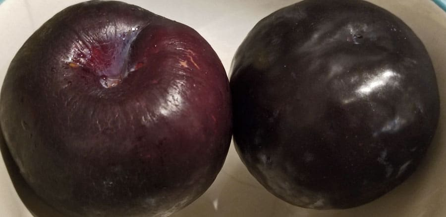black plums for juice