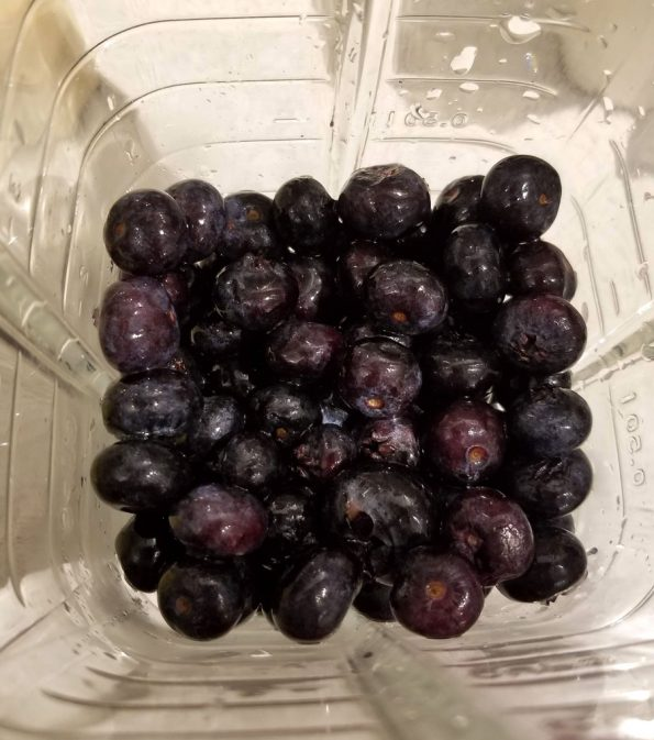 blueberries in blender