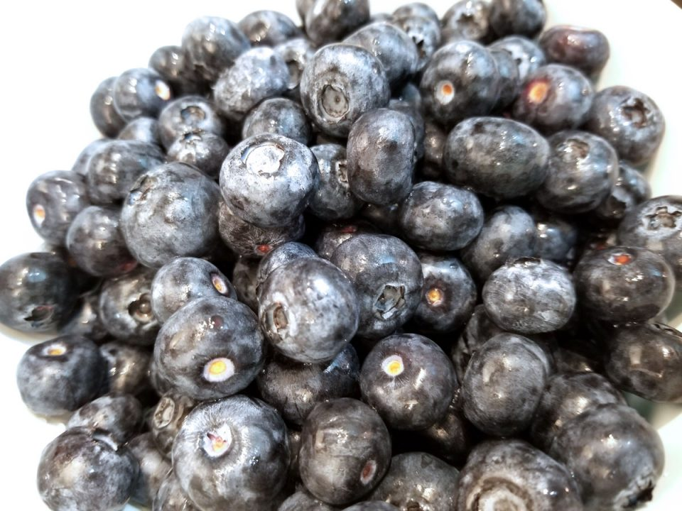 blueberries for making blueberry sauce