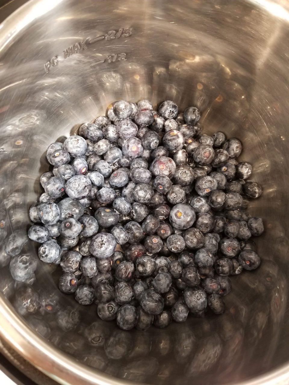 blueberries in instant pot