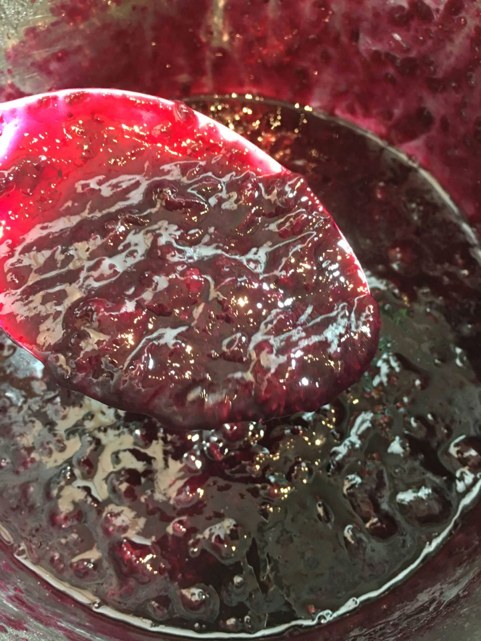 blueberry sauce in instant pot