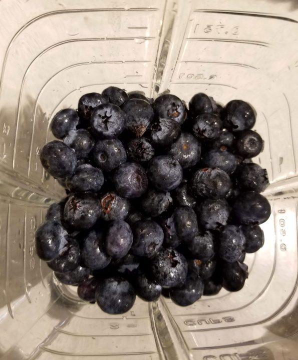 blueberries in blender