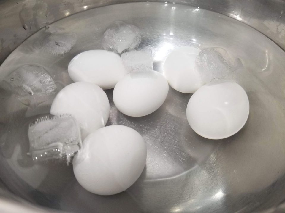 boiled eggs in ice water bath